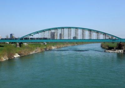 Sanation of the New Railway Bridge (also known as the Green Bridge, Hendrix Bridge)